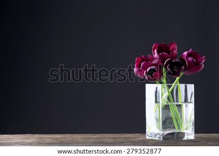 Beautiful purple tulips in glass vase on black background - stock photo