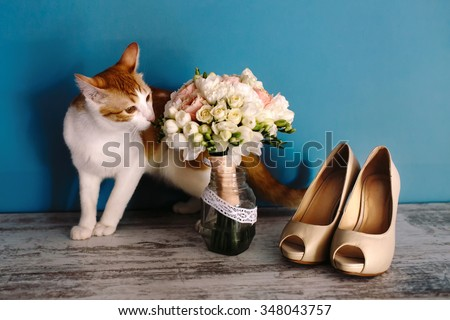 Beautiful red cat sniffs luxury delicate bouquet of flowers in the pot. Wedding shoes with high heels, pet, and a bridal bouquet of roses. - stock photo
