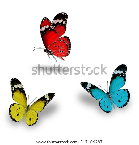 Beautiful Red, Light Blue and yellow butterfly flying up - stock photo