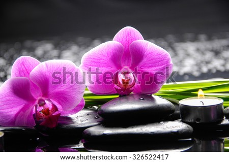 Beautiful red orchid with candle,plant and therapy stones  - stock photo