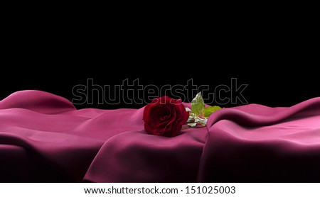 beautiful red rose on satin with black background - stock photo