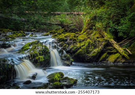 beautiful river among stones in moss - stock photo