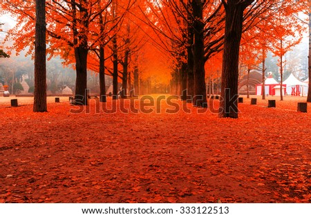 Beautiful romantic alley in a park with colorful trees and fog. autumn natural background - stock photo