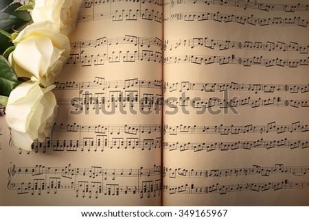 Beautiful rose on music sheets background - stock photo