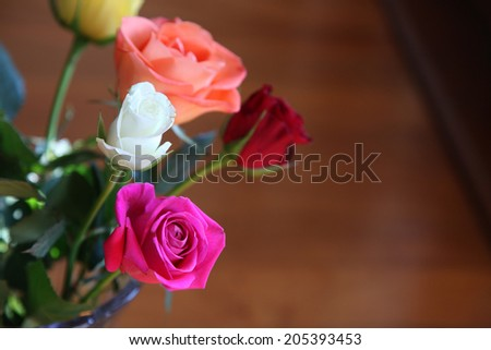 beautiful roses in an array of different colors - stock photo