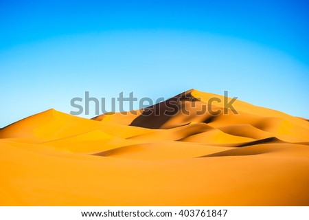 Beautiful sand dunes in the Sahara desert - stock photo