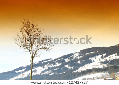beautiful Scene in Kirchberg/Austria - stock photo