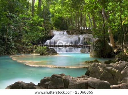 Beautiful scenery in the tropical forest. - stock photo