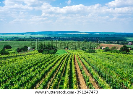 Beautiful scenery of Tuscany in Italy. Blue sky, beautiful weather and lovely countryside. - stock photo