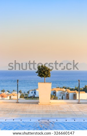 Beautiful sea view from clean swimming pool with plant decoration. Clear blue sky. - stock photo