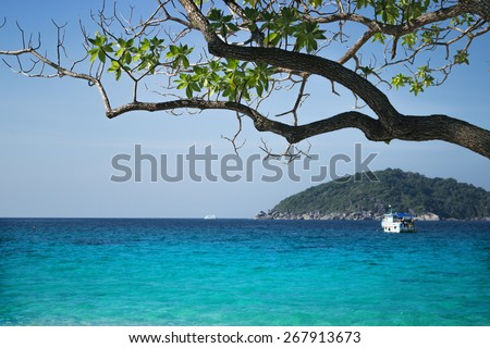 Beautiful seascape, the view from the shore - stock photo