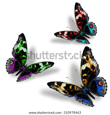 Beautiful set of flying Blue Pansy butterflies in fancy color profile with nice shadow beneath on the white background - stock photo