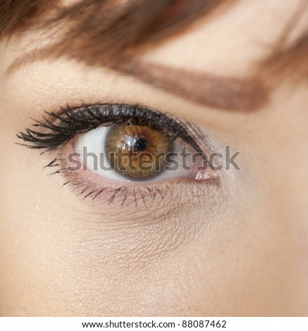 Beautiful shape of female eye with black-brown cosmetic make-up - stock photo