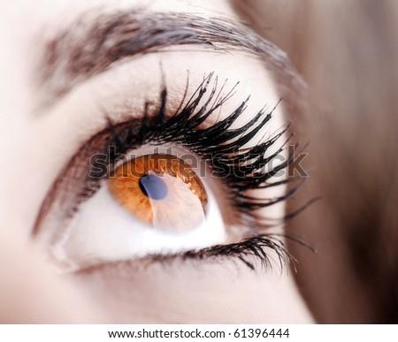 Beautiful shape of female eye with long eye-lashes - stock photo