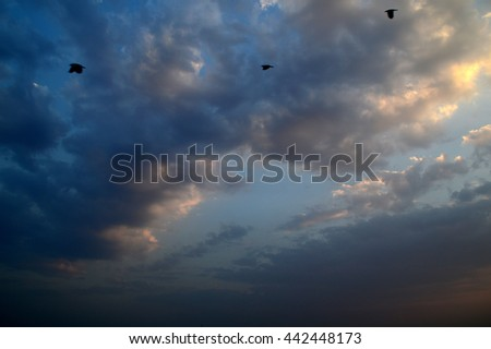 Beautiful sky with clouds - stock photo