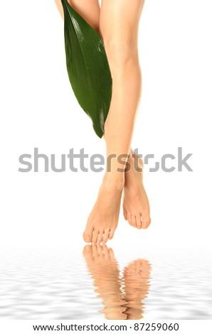 beautiful slim woman's legs isolated on white - stock photo