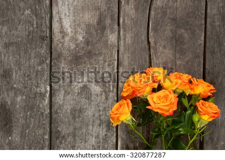 Beautiful small roses on wooden background - stock photo