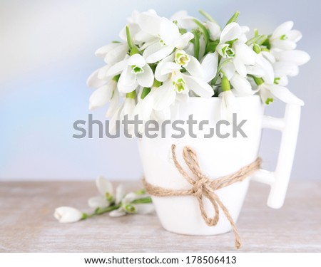 Beautiful snowdrops in cup on blue background - stock photo