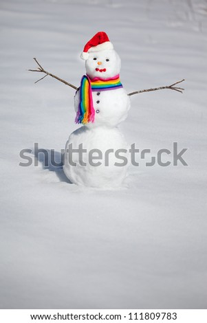 Beautiful snowman in rainbow hat and scarf - stock photo