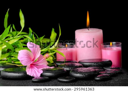 beautiful spa composition of pink hibiscus flower, twigs bamboo and candle on zen basalt stones with dew - stock photo