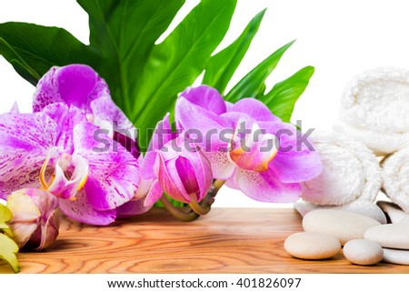 beautiful spa concept of blooming lilac orchid, white stones, towels and big tropical green leaf on root wood background is isolated, close up  - stock photo