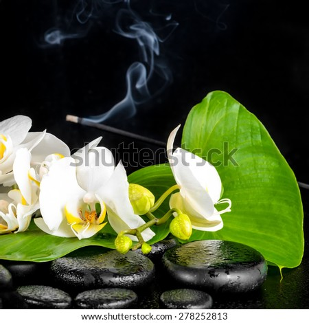 beautiful spa concept of blooming white orchid flower, phalaenopsis, green leaf with dew and candles on black zen stones, closeup - stock photo