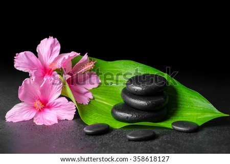 beautiful spa concept of pink hibiscus flowers, green leaf and stones pyramid with drops - stock photo
