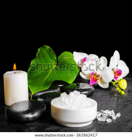 beautiful spa concept of white orchid flower, phalaenopsis, green leaf with dew, sea salt and candle on black zen stones, close up - stock photo