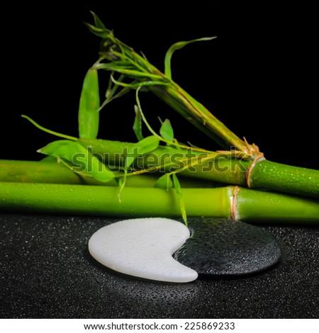 beautiful spa setting of symbol Yin Yang stones and natural bamboo stems with dew, closeup - stock photo