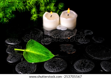 beautiful spa still life of green leaf Calla lily, twig and candles on zen basalt stones with dew in water - stock photo