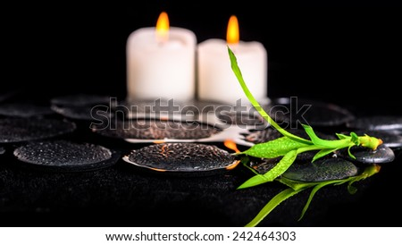 beautiful spa still life of green twig bamboo and candles on zen basalt stones with dew in reflection water, panorama  - stock photo