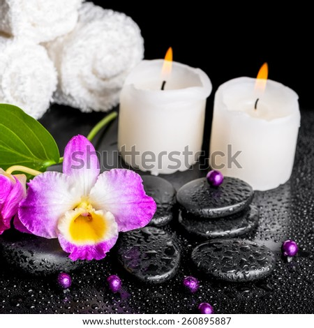 beautiful spa still life of purple orchid dendrobium, leaf with dew, towels, candles and pearl beads on black zen stones, closeup   - stock photo