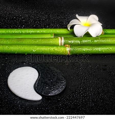 beautiful spa still life of symbol Yin Yang, frangipani flower and natural bamboo on zen basalt stones with dew, closeup  - stock photo