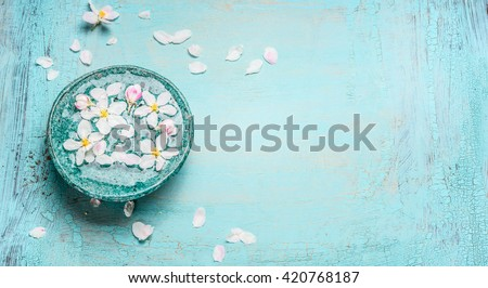 Beautiful spring blossom with white flowers in water bowl on Turquoise blue shabby chic wooden background, top view. Wellness and spa concept. Spring blossom background, banner - stock photo