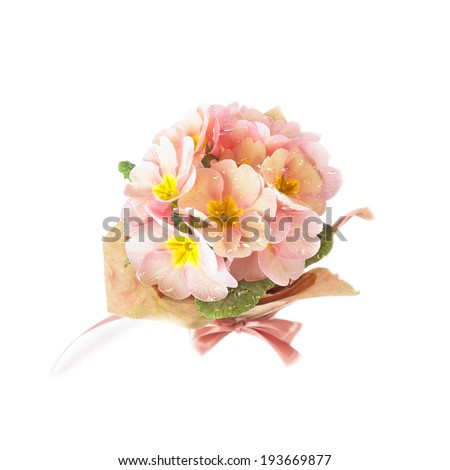 Beautiful spring bouquet with water drops isolated on white background - stock photo