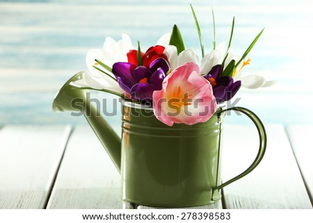 Beautiful spring flowers in metal watering can on blue background - stock photo