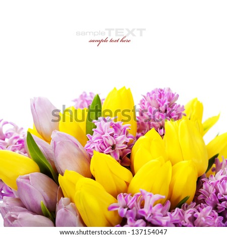 Beautiful spring flowers  over white (with easy removable sample text) - stock photo