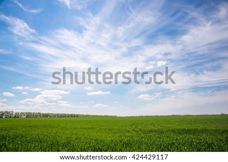beautiful spring landscape field and sky - stock photo