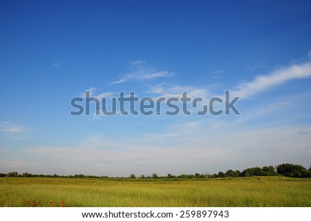 Beautiful spring meadow landscape with blue sky and white clouds - stock photo
