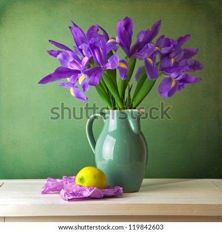 Beautiful still life with iris flower over grunge background - stock photo