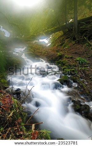 beautiful stream in a forest in early morning fog - stock photo