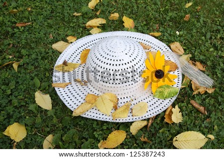 Beautiful Summer Hat - stock photo