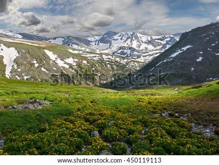 Beautiful summer landscape,Mountain creek, Russia, Siberia, Altai mountains, Katun ridge. - stock photo