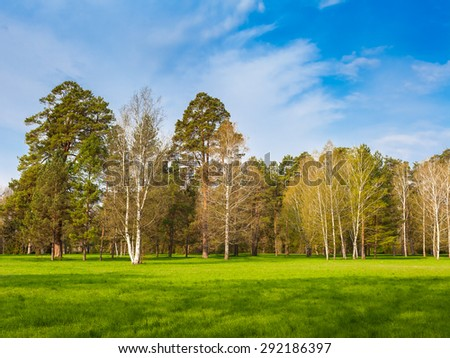 Beautiful summer landscape with field of green grass and perfect sky - stock photo