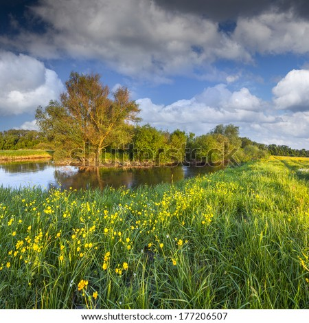 Beautiful summer landscape with the river - stock photo