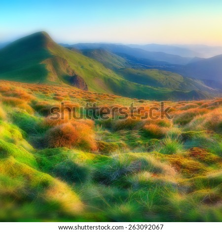 Beautiful summer sunrise in the mountains. Soft blurred background. - stock photo