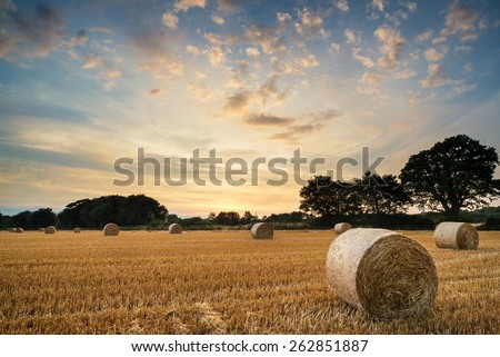 Beautiful Summer sunset over field of hay bales in countryside landscape - stock photo