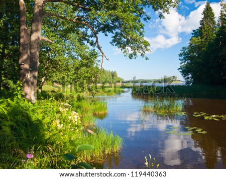 Beautiful summer water landscape in sunbeam - stock photo