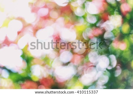 Beautiful sunny abstract natural green bokeh. Bokeh background from rose bush in summer. Light  circular green bokeh from tree in the park of forest - stock photo