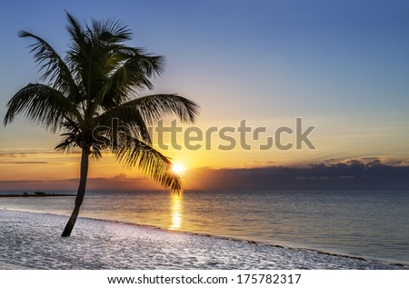 Beautiful sunrise at Key West, Florida, USA - stock photo